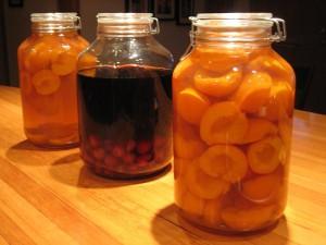 Настойка из абрикосов в домашних условиях на водке