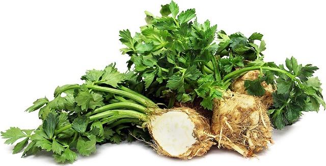 Квашенные баклажаны фаршированные овощами и сельдереем
