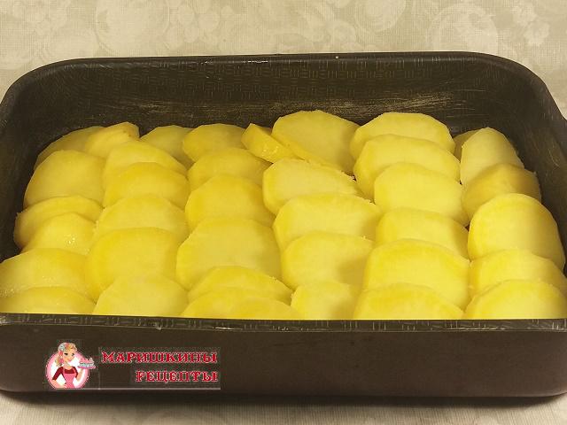 Укладываем кружочки картофеля в противень